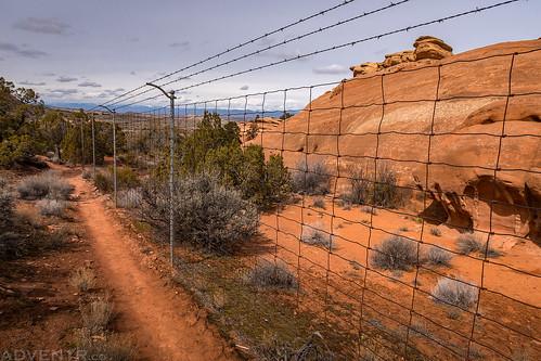 Buffalo Fence | by IntrepidXJ