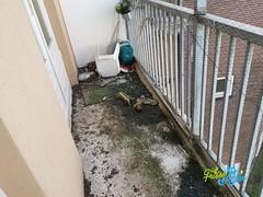 Duivenpoep schoonmaak / Pigeon dropping cleaning 39 - Schoonmaakbedrijf Frisse Kater