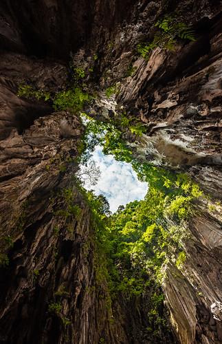art nature natural cave green naturephotography sunlight malaysia kualalumpur batucave 大自然 山洞 馬來西亞 黑風洞