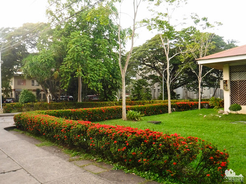 Silliman University | by Adrenaline Romance