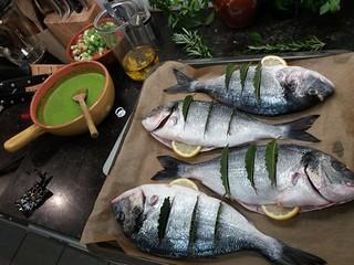De vissen van Ans en Jan... | by ellenbouckaert