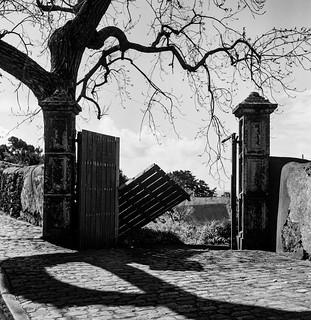 Gates  Caloura Azores.