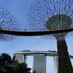 404 Singapore