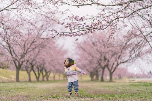 Spring Jumpi
