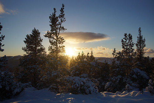 aberdeenshire scotland scottishhighlands highlands craigendarroch winter snow mountain hills trees forest sun sunset cairngorms topic