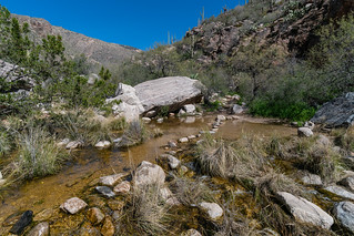 1903 Water at the first canyon crossing on the Pima Canyon Trail   by c.miles