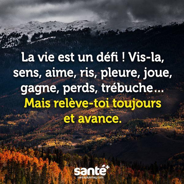 Les Plus Beaux Proverbes A Partager La Vie Est Un Defi Flickr