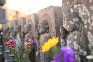 Jomyo-in Temple | by walking.biking.japan