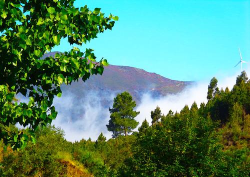portugal beirabaixa sobraldesãomiguel aldeia serra nevoeiro natureza paisagem beleza cores árvore folhas verde torreeólica