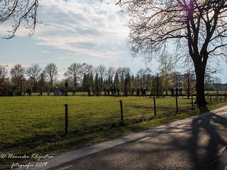 Hanneke Klijnstra-4130385   by LOEmedia Elburg