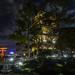 Japan Pavilion night Epcot pagoda