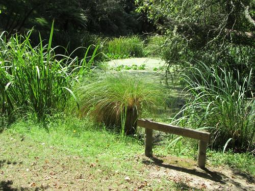 outdoor garden arboretum eastwoodhill tree sign pond ngatapa gisborne newzealand