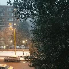 snowy timelapse