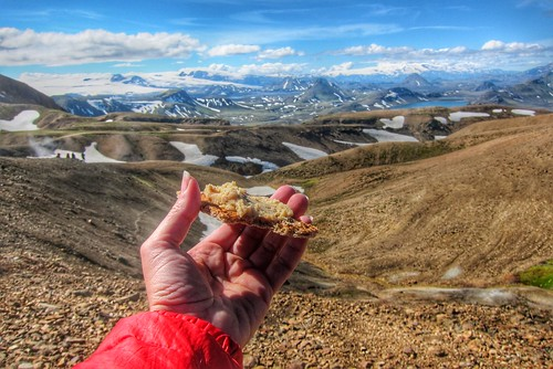 Iceland ~ Landmannalaugar Route ~  Ultramarathon is held on the route each July ~ Hiking from Camp -  Lava  field - Have a snack | by Onasill ~ Bill Badzo