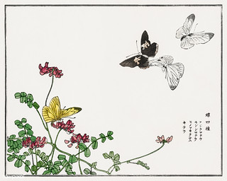 Butterflies and flowers illustration from Churui Gafu (1910) by | by Free Public Domain Illustrations by rawpixel