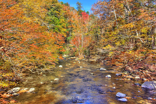 Cliff Branch River - Great Smoky Mountains National Park