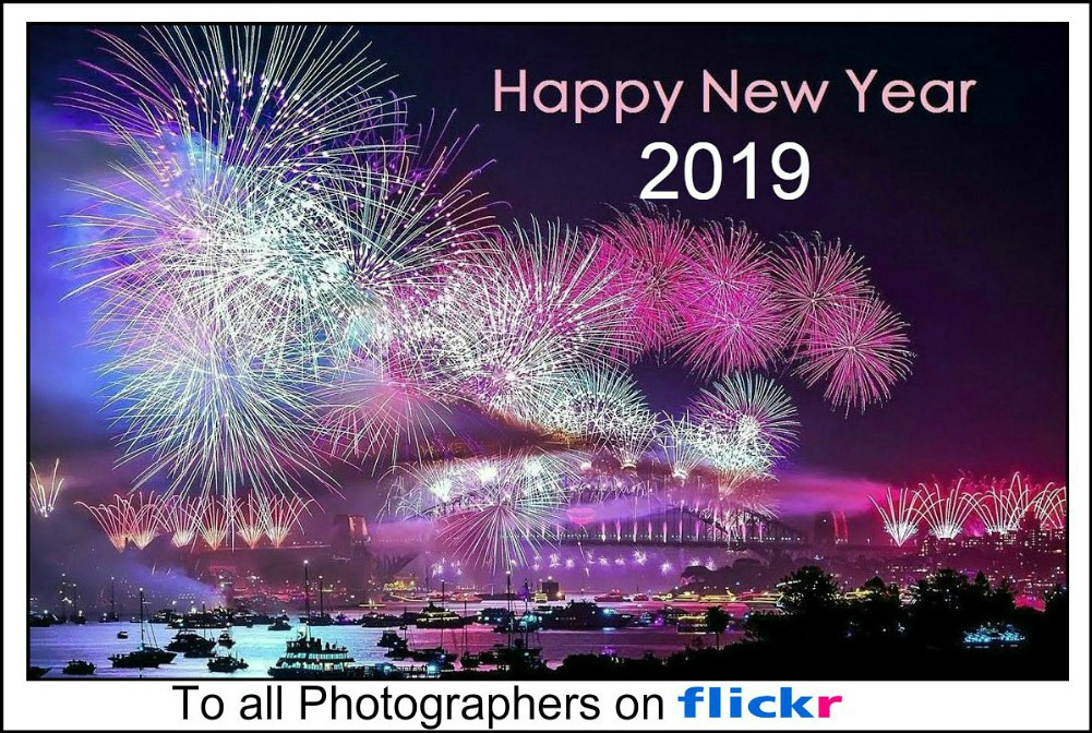 Happy New Year 2019 ..