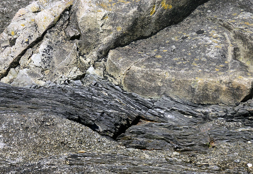 Rock texture at Botany Bay on Vancouver Island