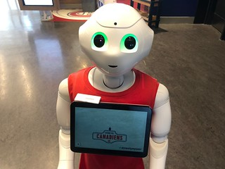 Pepper Robot at Avenue des Canadiens | by brownpau