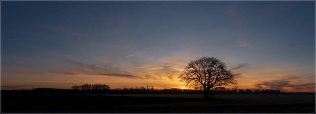 Sunrise_93425P