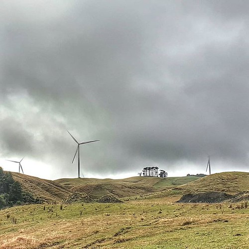 Elegant turbines Half hidden by misty rain Turning, turning. Where have the pipiwharauroa gone? http://bit.ly/2GkfGdU #pipiwharairoa #windturbines #teuku | by easegill