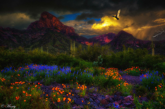 Picacho Peak, Arizona