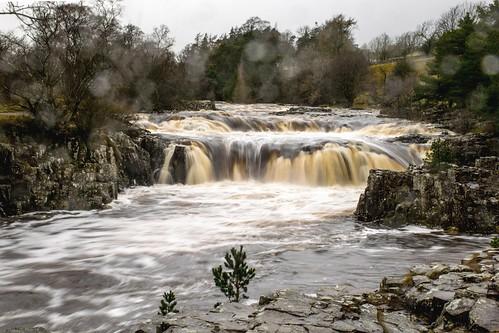 lowforce rivertees waterfall coth ngc coth5 npc