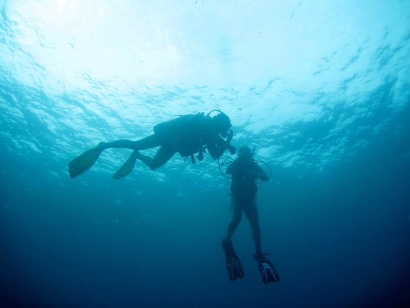 G-July 11th 2012 La Boca Diving Pedro 2509