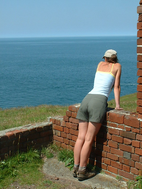 The Look Out Point
