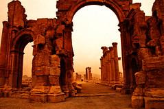 PALMIRA, SIRIA  2338 2-1-2011
