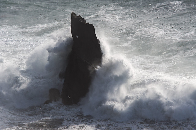 Waves Crashing, Dyrhólaey