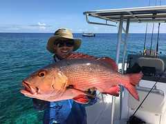 Visit the Luxury Yacht Charters Papua New Guinea