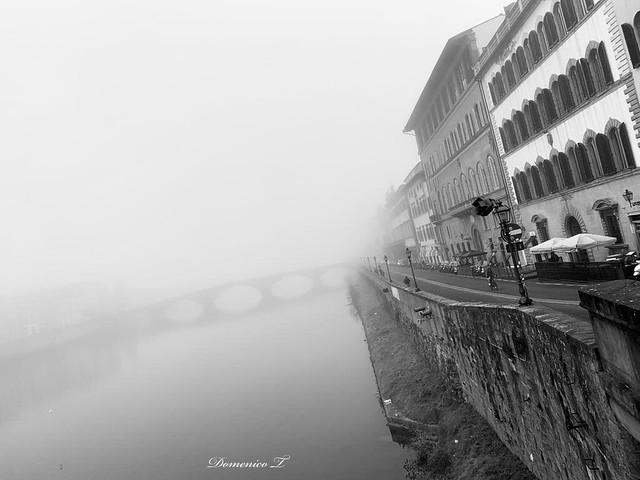 La nebbia in b/n