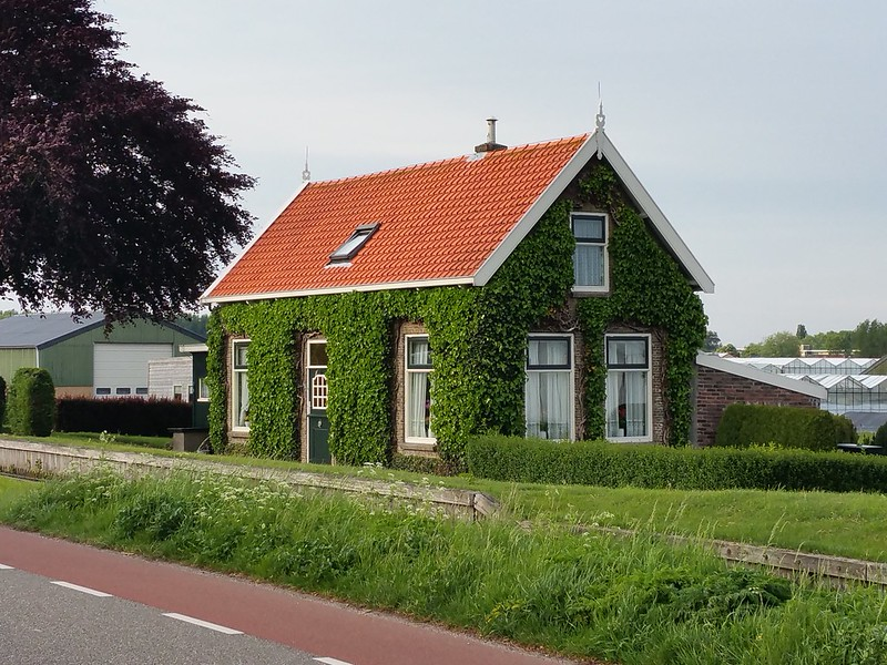 groene gevel, huisje in Pijnacker-Nootdorp