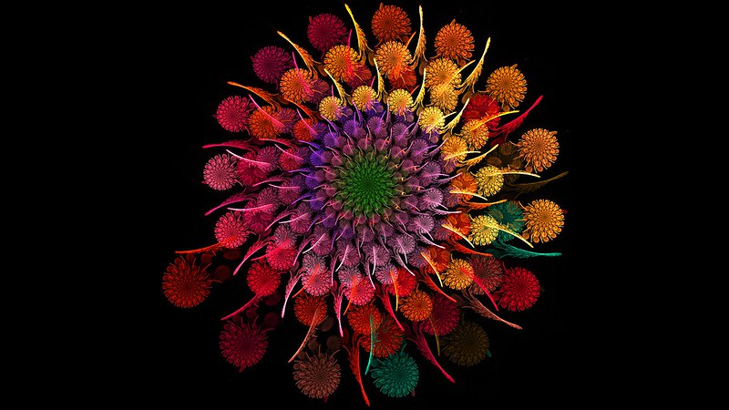 Обои радужный, цветок, спираль, фрактал картинки на рабочий стол, фото скачать бесплатно