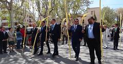 procesion-domingo-de-ramos-tomelloso-la-borriquilla-14