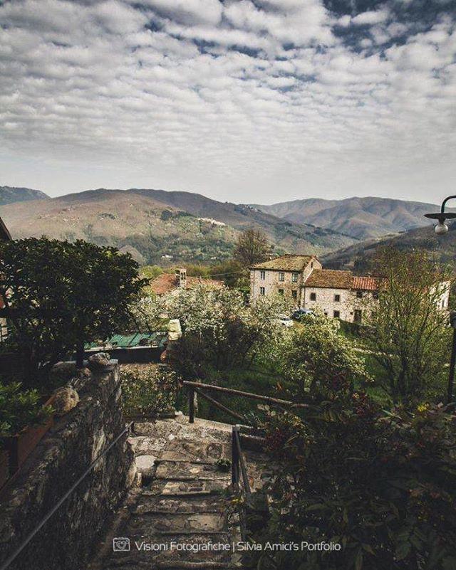 Silvia Amici Flickr