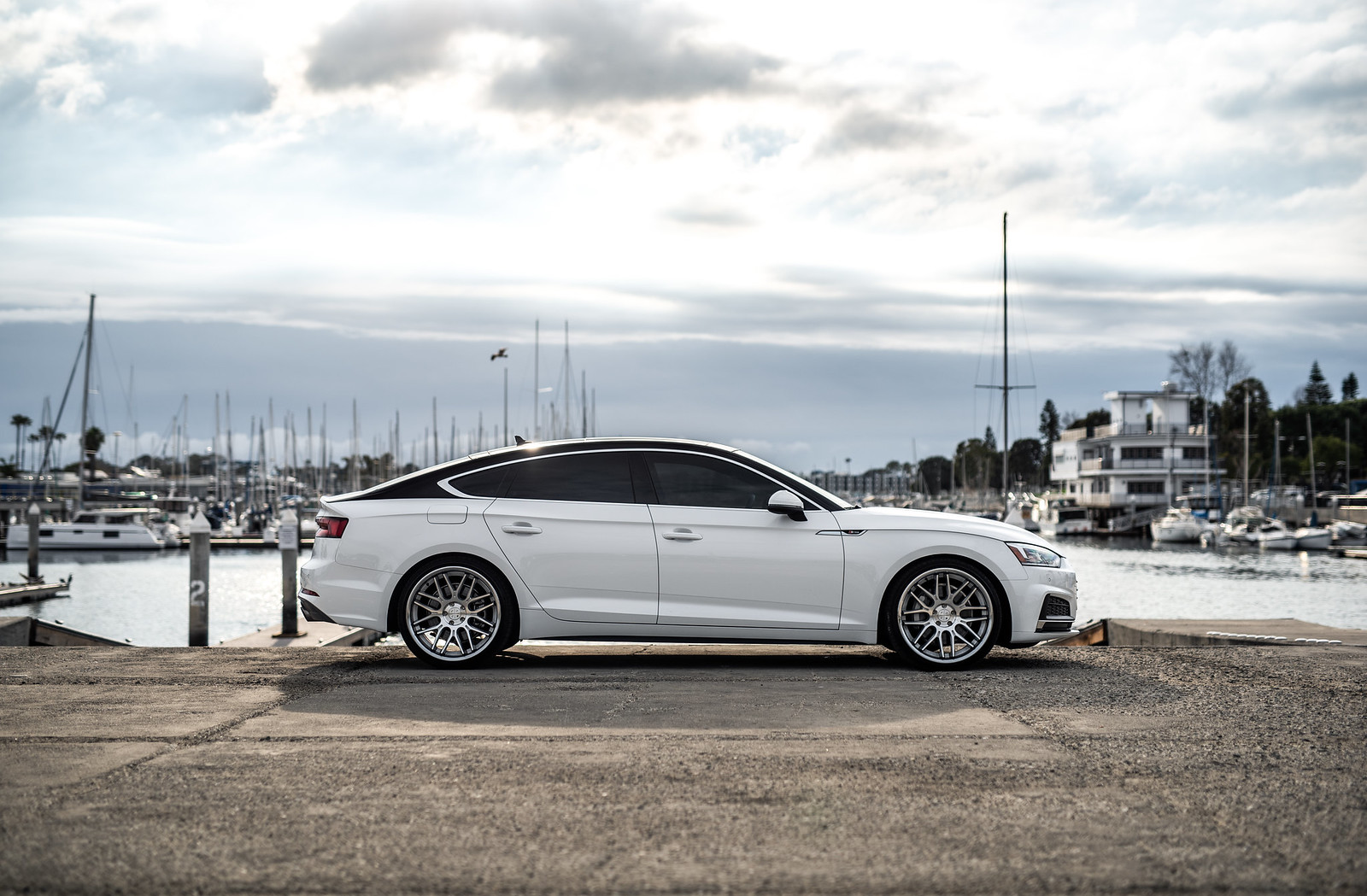 2019_Audi_S5_White_With_BD27 (9)