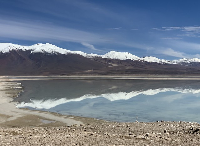 The White Lagoon (Laguna Blanca) at 4,350m. (14,270 ft.), Bolivian Highlands (Altiplano Boliviano), Sur Lípez, Potosí, Bolivia.