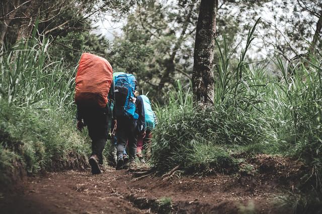 At merbabu mountain