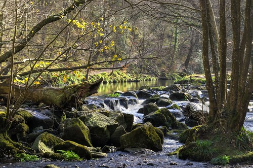 The River Teign, Dartmoor, Devon - Explored