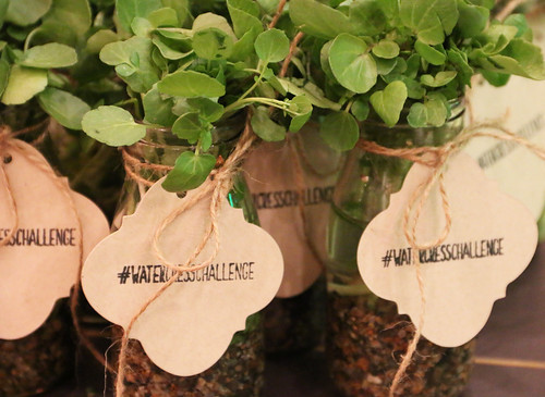 #WatercressChallenge London Kitchen Society event