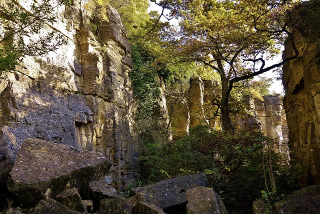 GERMANY, Felsengärten bei Hessigheim, serie , über dem Neckar, 76607/10980