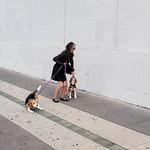 Sat, 30/09/2017 - 12:55 - San Francisco, 2017 photography.kenwalton.com  FACEBOOK | TUMBLR | IG | TWITTER | FLICKR  | EyeEm