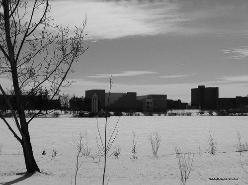UB Lake in Winter - View 2 | by cordeliasmom2012