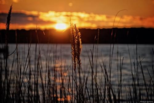 dancinginthedark sunset watchingthesunset sunlight sun winter silhouette silhouettes water bay deweybeachde delaware de deweybeach sussexcounty view clouds evening eveninglight eveningskies sky rehobothbay