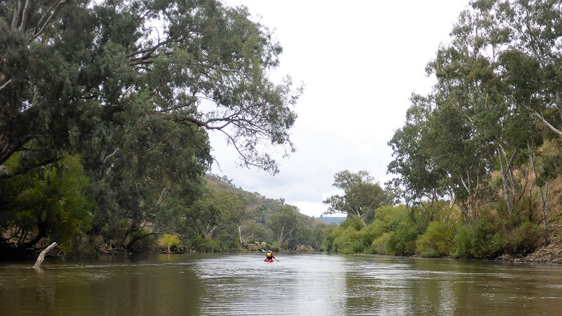 Tthe Murray near Burrowye bend