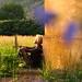 Zachód słońca by Yoga w Chmurach
