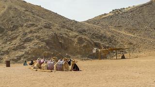 Egypt | by traveleatenjoyrepeat