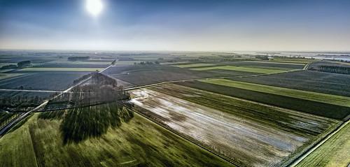 biesbosch drimmelen djimavicpro drone aerial blue bright color colors colours colour green landscape light netherlands nederland outdoors outdoor panorama reflection sky sun shadow tree trees thenetherlands wimvandem golddragon